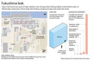 Japan Fukushima plant's radioactive leak severity upgraded